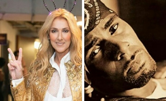 Celine Dion pulls her song with R Kelly from Streaming Services