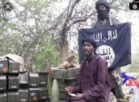 Ousted Boko Haram leader Al-Barnawi detained by colleagues